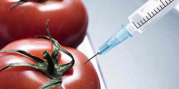 genetic_engineering